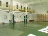 zdjęcie przedstawia pustą małą salę Hali Widowsikowo-Sportowej